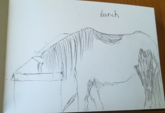 pony_lunchtime_goldcrestblog2019